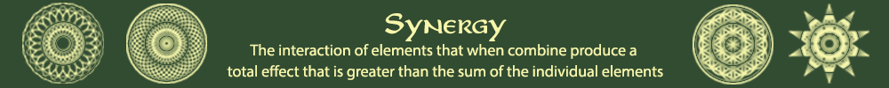 The Synergy Centre Logo